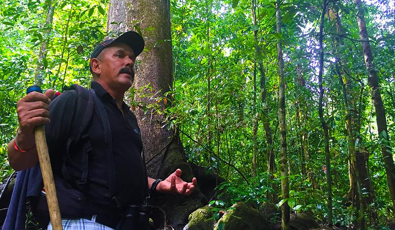 Corcovado jungle tour