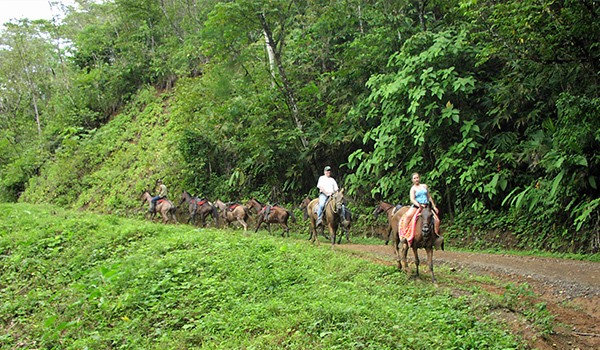 Horseback riding the Osa jungle
