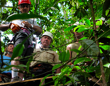Zipline the jungle canopy