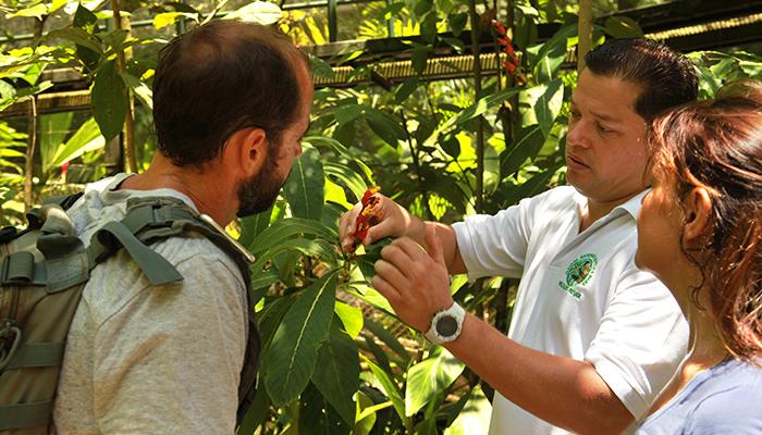 Greentique hotels nature expert