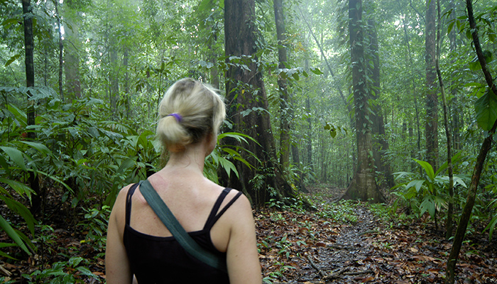 Corcovado National Park hiking