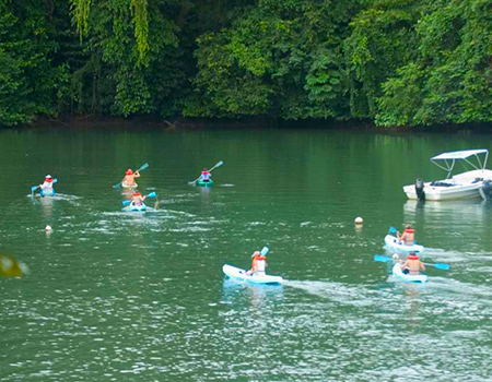 Kayaking tours the Osa Peninsula